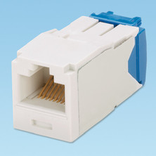 PANDUIT CATEGORY 6, RJ45, 8-POSITION, 8-WIRE UNIVERSAL MODULE. AVAILABLE IN 9 COLOURS.